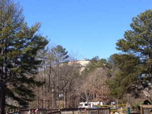 View of Stone Mountain through the trees.
