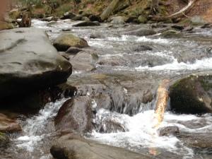 Plenty of mountain streams around.
