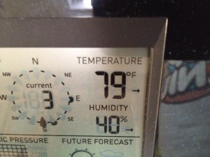 Warm temperature, low humidity, light breeze.