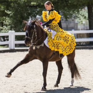 Another horse with costumed rider.