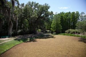 Jungle Gardens.