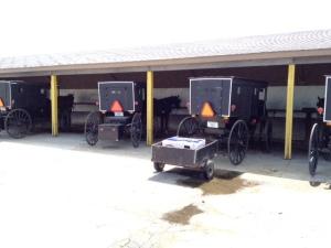 Amish buggy parking at WalMart.