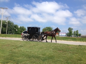 Amish buggy driving down the road.