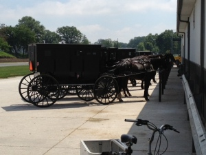 Amish buggy parking at E&S.