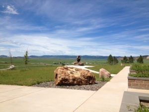 Petrified wood at welcome center