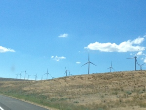 Wind farm in Washington