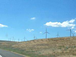 Wind farm in Washington