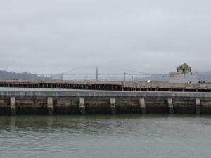 Golden Gate bridge from afar.