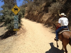 Lots of horse trails in Griffith Park