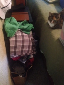 Pile of giveaway clothes. Callie acts disinterested.