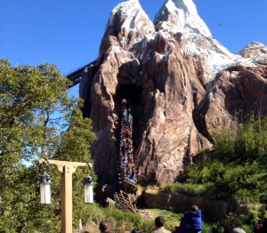 Expedition Everest coaster.