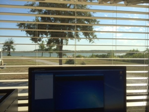 View from the desk