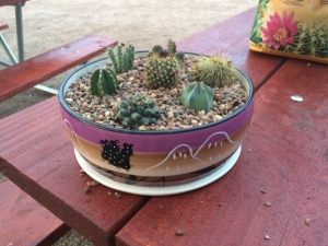 "Our new ""portable desert"""