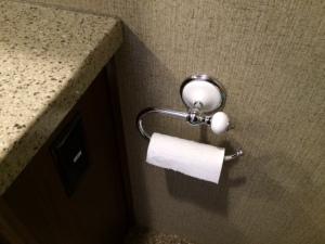 Toilet paper holder in main bathroom