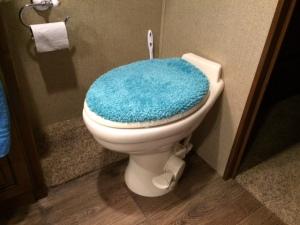Dometic 320 toilet in main bathroom