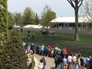 Watching the horses at Keeneland