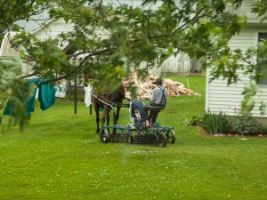 Mowing the grass (note child asleep in car seat)