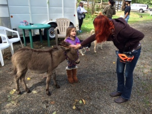 Visiting with WIllow, the four-month-old mini donkey.